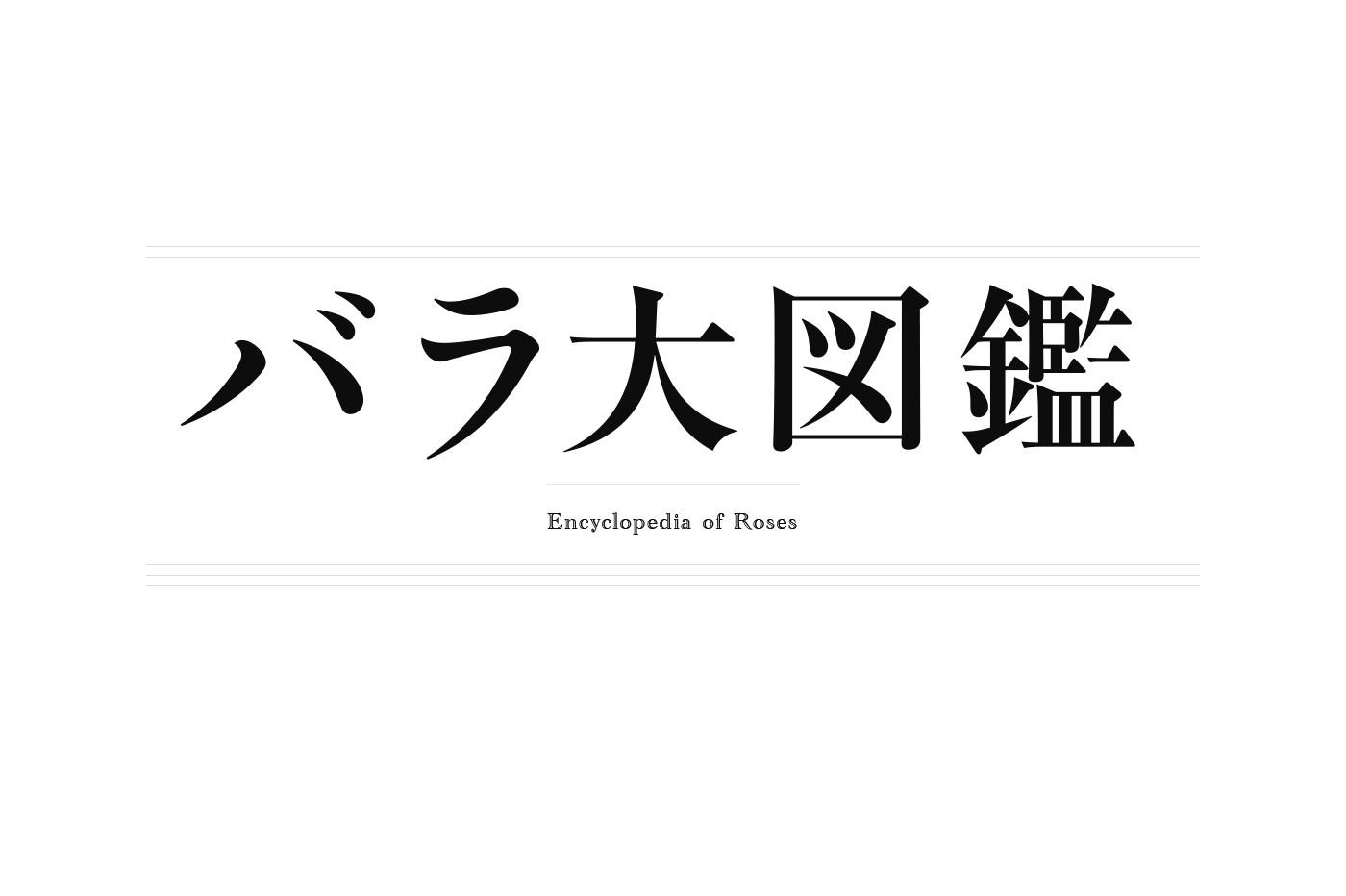bara_logo