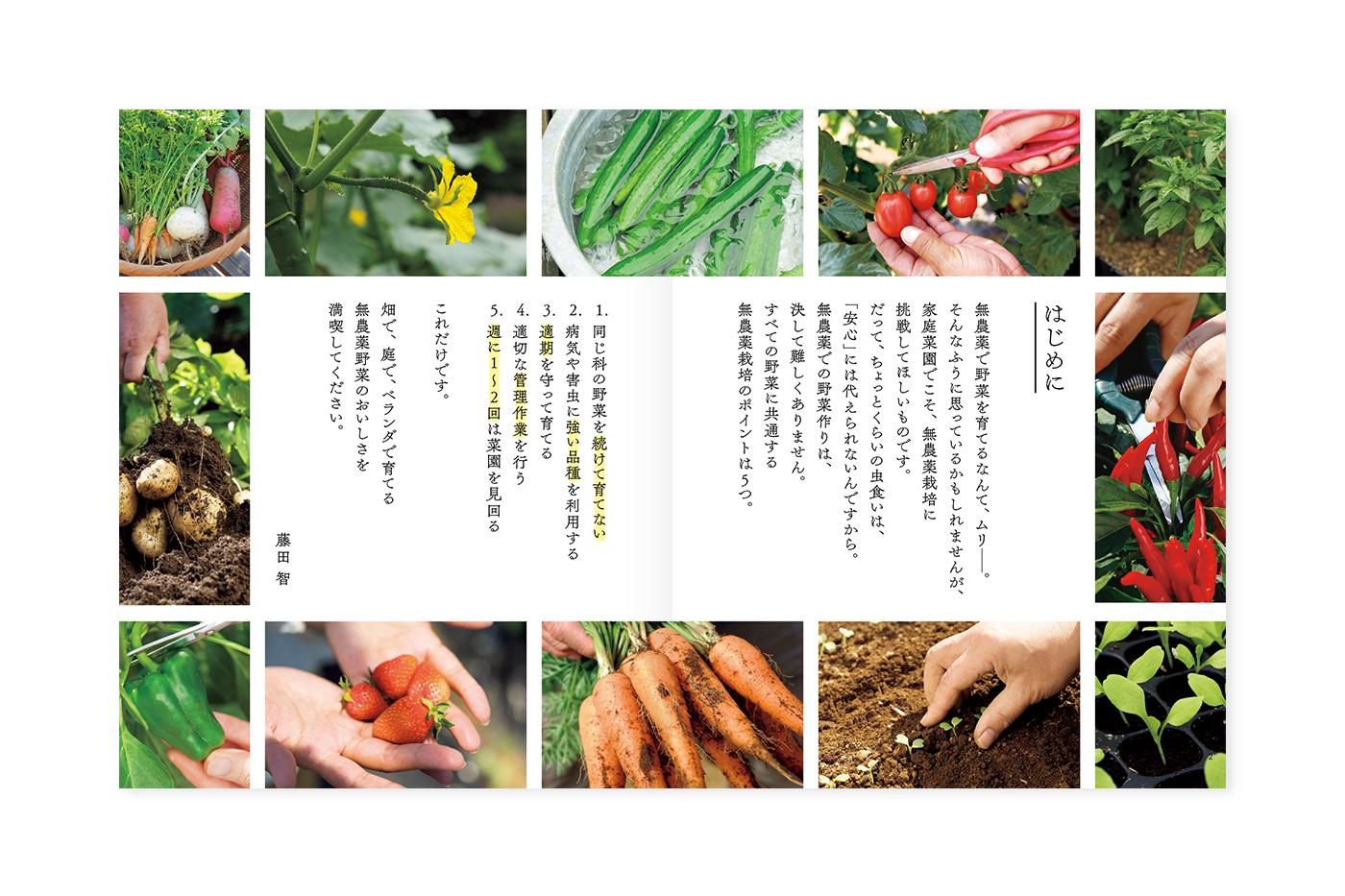 yasai_1